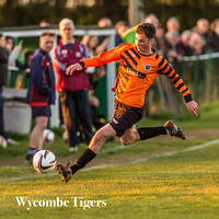 Wycombe Tigers