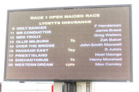 Race 1 - Opens Maiden (2 of 150)