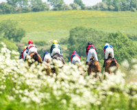 Fitzwilliam at Dingley - Saturday 26th May 2018