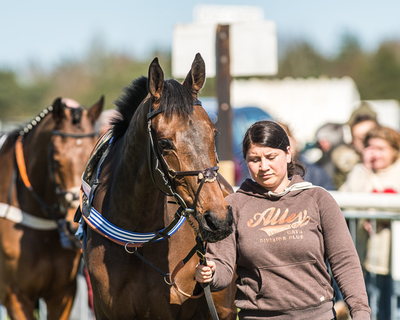 Race 1 - Puckeridge Hunt Members-9