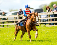 Novice Riders 148cm Race -  Grafton Pony Races 15th May 2017